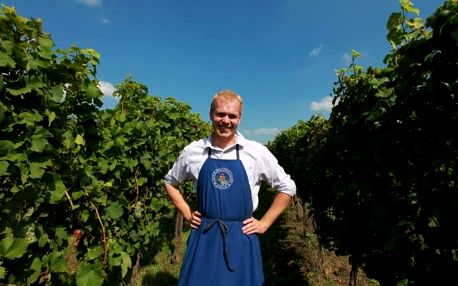 Domácí degustace moravských vín + bedna 6 lahví