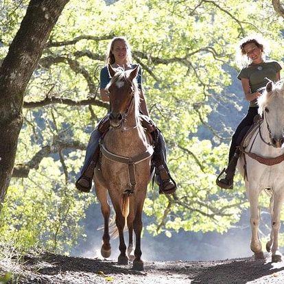Péče o koně a projížďka v přírodě