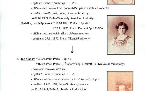 Rodokmen z otcovské nebo mateřské linie do 5. generace5