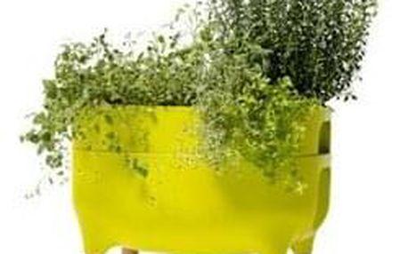 Plastia Nízká pěstební nádoba Urbalive, zelená