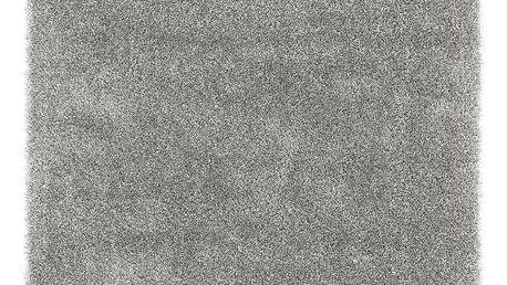 Koberec S Vysokým Vlasem Lambada 3, 120/170cm, Stříbrná