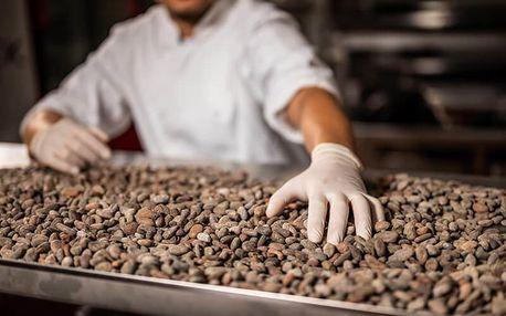 Domácí degustace čokolády + Čokoládový balíček pro všechny čokoholiky
