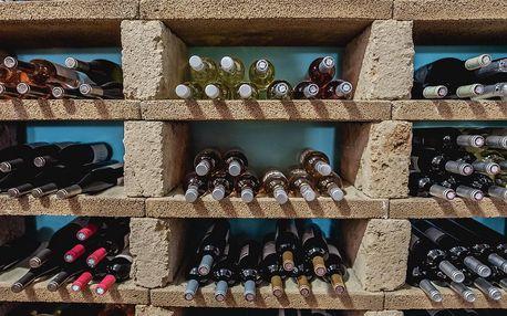 Domácí degustace vín - Červená vína + bedna šesti druhů vína