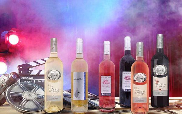Domácí degustace vín - Vína z vinic Pierra Richarda a Gérarda Depardieu + bedna šesti druhů vína, U vás doma, Filmová vína3