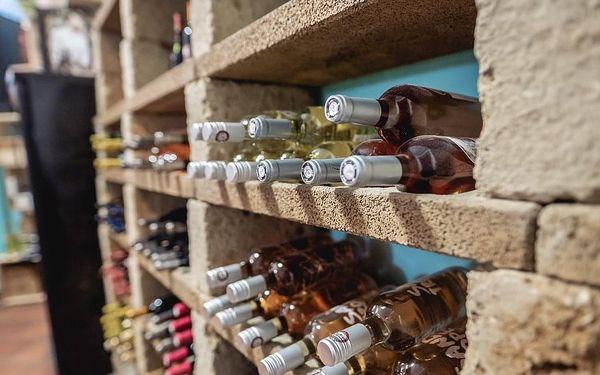 Domácí degustace vín - Víkendový balíček + bedna šesti druhů vína, U vás doma, Víkendový balíček4