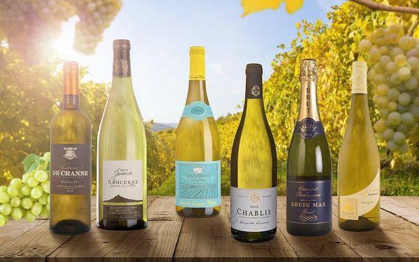 Domácí degustace vín - Chardonnay a Sauvignon Blanc + bedna šesti druhů vína, U vás doma, Chardonnay a Sauvignon Blanc2