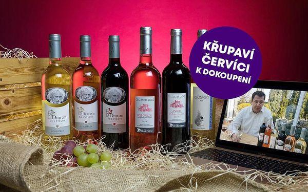 Domácí degustace vín - Vína z vinic Pierra Richarda a Gérarda Depardieu + bedna šesti druhů vína, U vás doma, Filmová vína4