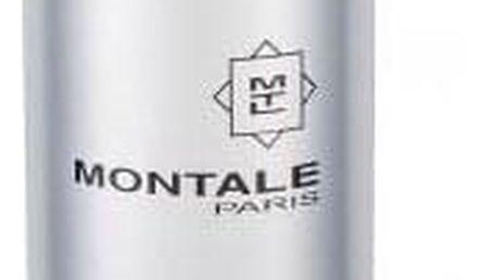 Montale Paris Jasmin Full 100 ml parfémovaná voda unisex