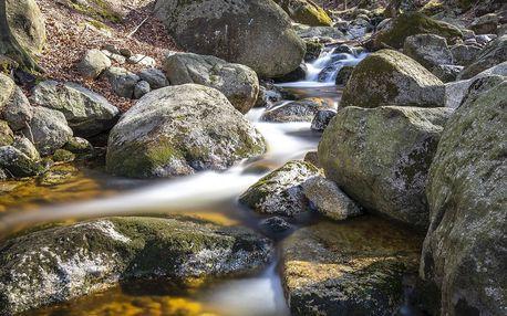 Fotokurz v přírodě Jizerek nebo vltavských vyhlídek