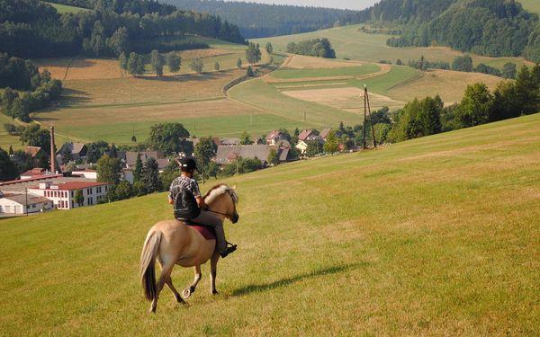 Na hřbetě fjordských koní: vyjížďka až pro 2 osoby