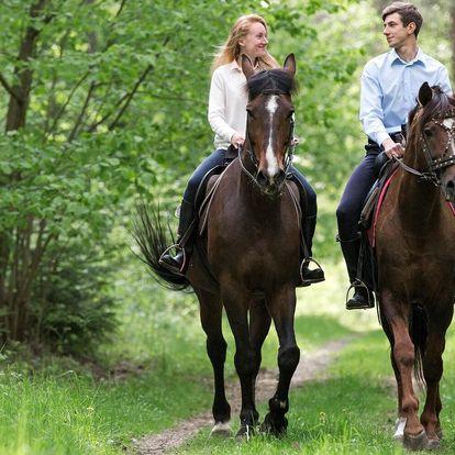 Hurá do sedla: 60minutová vyjížďka na koni
