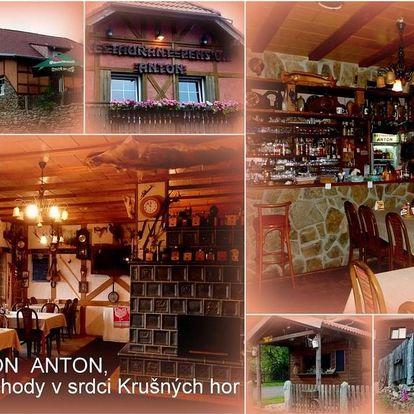 Lázeňské město Jáchymov: Restaurant Pension-Anton