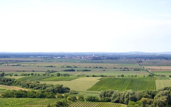 Vinařský penzion Přední Hora
