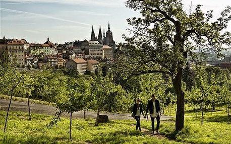 Praha na 3-5 dnů, snídaně v ceně