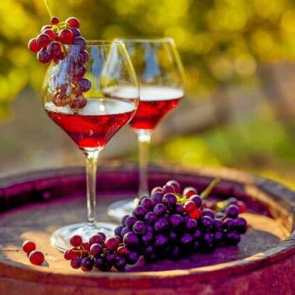 Jižní Morava v Penzionu V Zahraničí s neomezenou konzumací vína, živou hudbou a polopenzí + 2 děti zdarma