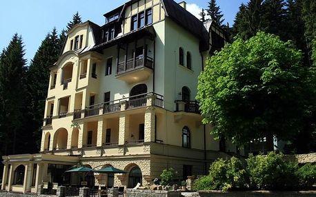 Léto v hotelu ST. Moritz 2+1, Mariánské Lázně