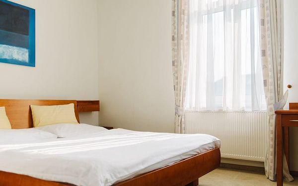Prázdniny v hotelu La Passionaria 2+1, Mariánské Lázně, vlastní doprava, polopenze4