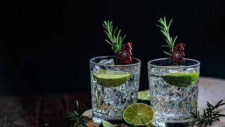 Domácí degustace ginu