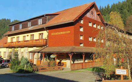 Horský hotel Kyčerka na Valašsku s polopenzí