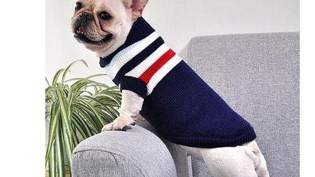 Obleček pro psa Austin