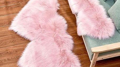 Chlupatý kobereček B07139