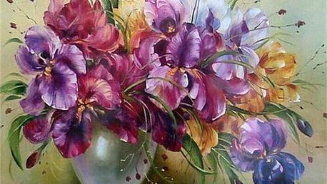 Malování podle čísel B04872