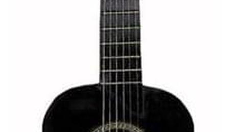 Kytara pro začátečníky Gustav