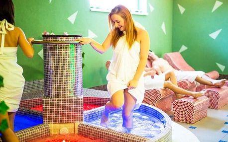 Nízké Tatry v Hotelu Bystrina *** nebo v Hotelu Poľovník *** s bohatým wellness, vyžitím pro děti a polopenzí