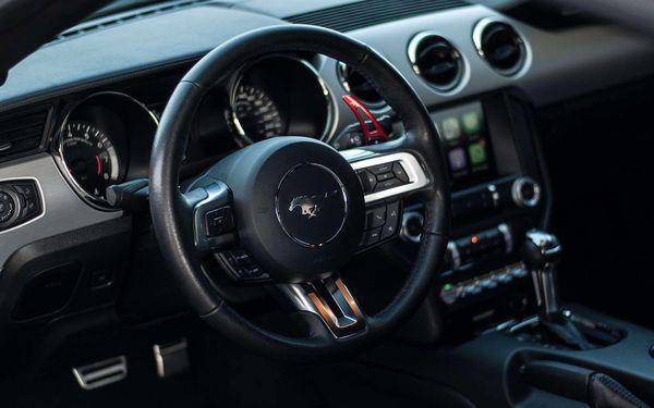 15 min (15 km) jízda ve Ford Mustang GT 5.0 jako řidič bez paliva2