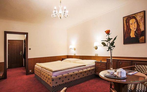 Nymburk, hotel Ostrov**** u klidné části lesoparku
