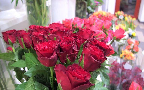 9 růží, 60 cm3