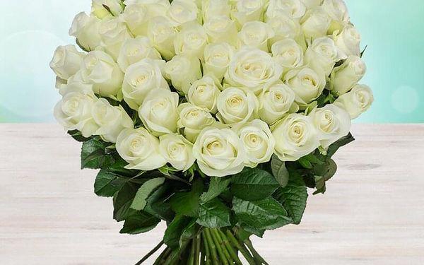 9 růží, 60 cm5