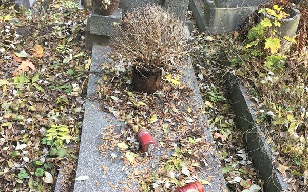 Jednorázový úklid hrobového místa5