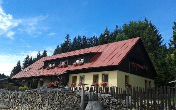 Modrava, Plzeňský kraj: Pension Arnika