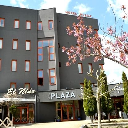 Mladá Boleslav, Středočeský kraj: Hotel Plaza