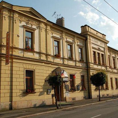 Hradec Králové, Královéhradecký kraj: Penzion Černý Kůň