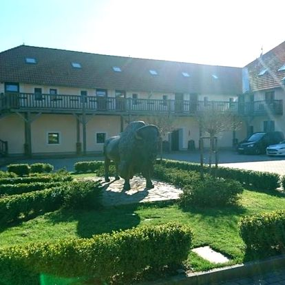 Česká Kanada: Bison Ranch