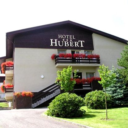 Františkovy Lázně, Karlovarský kraj: Hotel Hubert