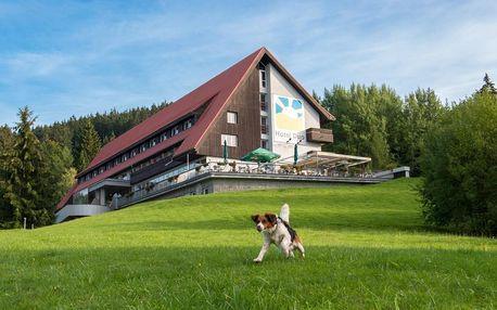 """Letní """"kouzelné"""" prázdniny v Horní Bečvě"""