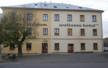 Wellness hotel v blízkosti zříceniny hradu Kolštejn