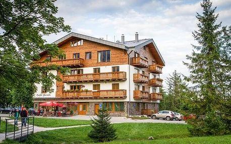 Vysoké Tatry 1 km od lanovky na Lomnický štít ideální pro rodiny ve Vile Borievka + 2 děti do 18 let v ceně