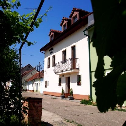 Bořetice, Jihomoravský kraj: Penzion u Ivana