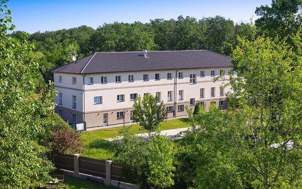 Milovice, Středočeský kraj: Penzion Lesni
