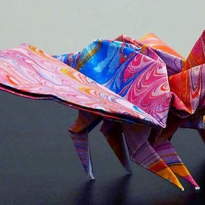 Základní kurz origami pro začátečníky i pokročilé