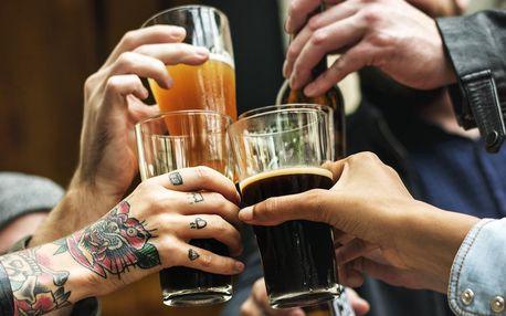 0,5 l piva na minifestivalu malých pivovarů