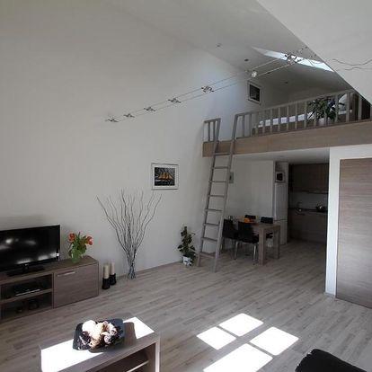 Hradec Králové, Královéhradecký kraj: Boromeum Residence