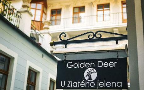 Praha na 2-3 dny, snídaně v ceně