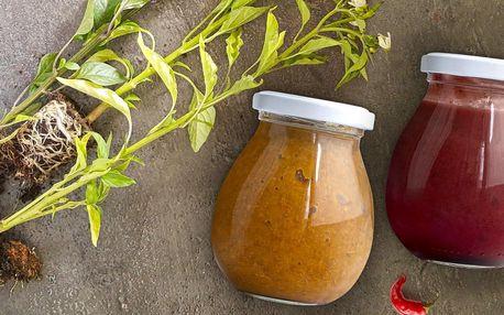 2 fermentované chilli pasty a 3 sazenice papriček