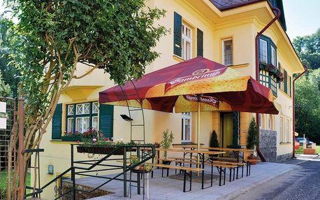 Děčín, Ústecký kraj: Hotel Marion