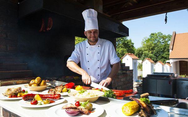 Hotel Galant (My hotel), Pálava a Slovácko, vlastní doprava, snídaně v ceně2